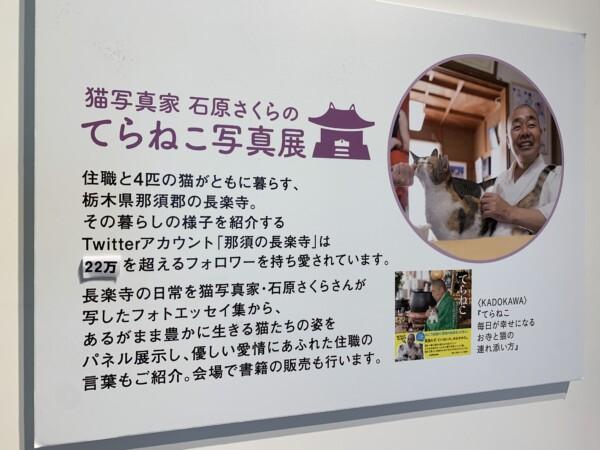 猫寺 栃木 那須
